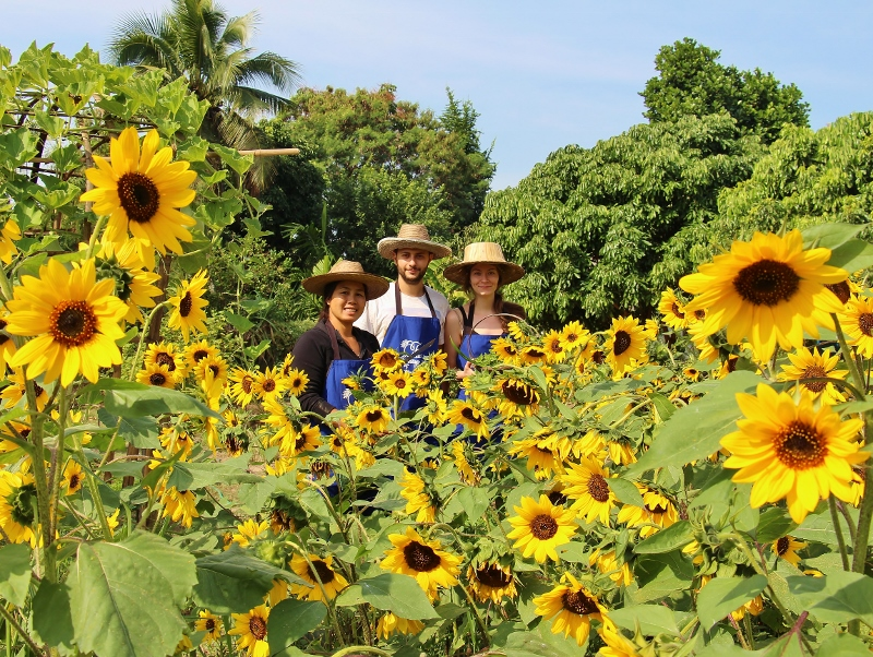 Thai Cooking Class and Thai Farm