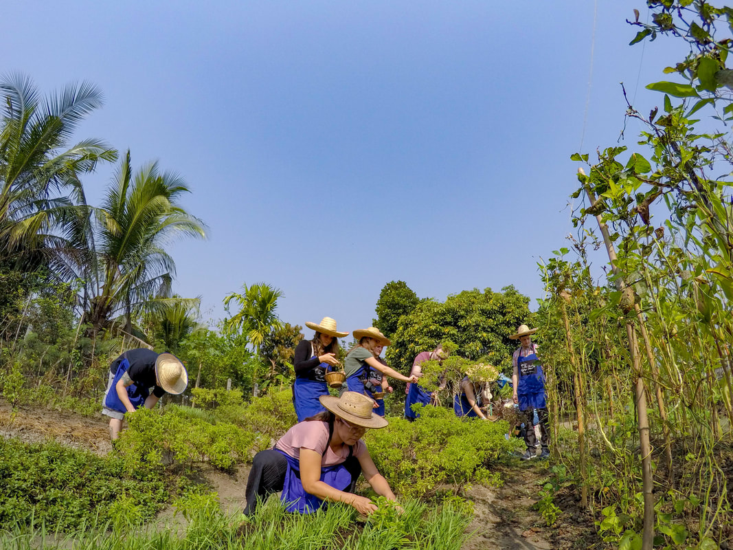Thai Secret Cooking School and Organic Garden. February 5-2018